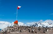 Chilean Base Antarctica Flag Flying