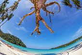 fisheye view on beach with blue sky and sun