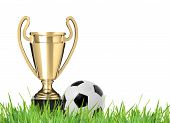 Trophy And Soccer Ball
