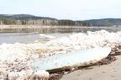 Scrapped large floe on the river Caen. Zelenogorsk