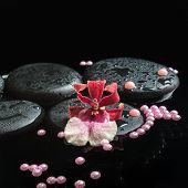 Spa Still Life Of Zen Stones With Drops, Orchid Cambria Flower And Pearl Beads On Water, Closeup