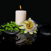 Spa Still Life Of Passiflora Flower, Green Leaf Fern With Drop And Candle On Zen Stones In Ripple Re