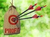Profit - Arrows Hit in Red Mark Target.