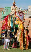 Decorated royal elephant