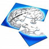 Brain Concept Puzzle