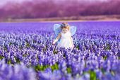 Cute Toddler Girl In Fairy Costume In A Flower Field