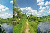Triple - Bogland