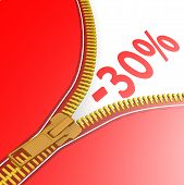 Zipper With 30% Off