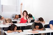 Smiling Student Raising Hand With Classmates Sleeping At Desk