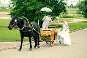 picture of carriage horse  - Romantic Bride and groom in carriage with horse on wedding day - JPG