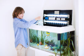 picture of zoo  - Happy boy holding a plastic bag with new fishes he bought at the zoo store for his home room aquarium - JPG