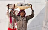 Women Carry Basket Of Stones On Their Head At Golden Temple. Amritsar. India
