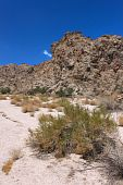 Grapevine Canyon - Nevada