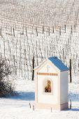 God's torture near Hnanice with winter vineyard, Southern Moravia, Czech Republic