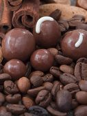 chocolate with coffee beans