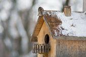 Wooden birdhouse. Close-up.