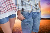 Couple in check shirts and denim holding hands against countryside scene