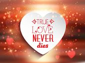 Valentine's Day background with the words true love never dies in a heart