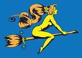 picture of nu  - The bared witch flies on a broom - JPG