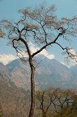Tibetan Mountain's Landscape