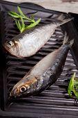 Fresh Fish On Roast.