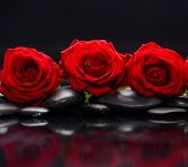 red rose and therapy stones