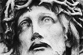 stock photo of thorns  - Jesus Christ in a crown of thorns  - JPG