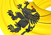 pic of pomeranian  - 3D Flag of Pomeranian Voivodeship Poland - JPG