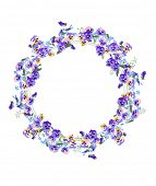 image of viola  - Detailed contour wreath with forget - JPG