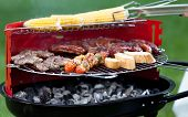 picture of frazzled  - Delicious meat and vegetables on charcoal grill - JPG
