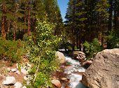 Big Pine Creek