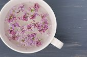 picture of ceramic bowl  - Fresh lilac flower petals floating on water in the white ceramic bowl on blue painted background - JPG