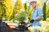picture of plant pot  - Portrait of confident man planting pot at garden - JPG