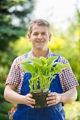 stock photo of plant pot  - Portrait of happy gardener holding potted plant at nursery - JPG