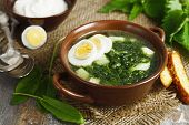 image of sorrel  - Soup of sorrel and nettles on the table - JPG