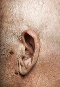 Elderly man's ear