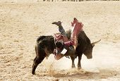 stock photo of bull-riding  - the bull riding event at a rodeo in arizona - JPG