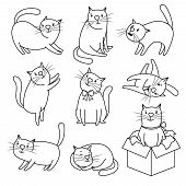 Hand Drawn Cat. Doodle Cats Isolated On White Background, Funny And Happy Cartoon Kitty Character Ve poster