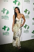 LOS ANGELES - MAR 3: Nicole Scherzinger at the Global Green USA 7th Annual Pre-Oscar Party 'Greener Cities for a cooler Planet at Avalon in Los Angeles, California on March 3, 2010