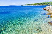 Coastline Background Picture Of Croatian Beach Island With Crystal Clear Water. poster