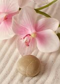 raked sand and orchid flowers