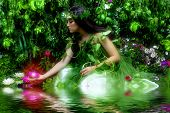 foto of night-blooming  - Enchanted garden and the fairy  - JPG
