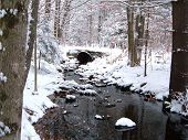 Small stream in winter