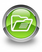 Folder glossy icon