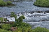 Beauty Abounds as the Water Flows