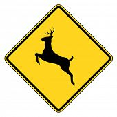 Deer crossing warning sign, isolated on white background.