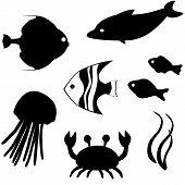 Vetor de silhuetas de peixes set 3