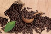 Coffee beans in a hessian sack with leaf sprig over papyrus  background.