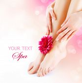 Woman's Feet and Hands isolated on white. Manicure and Pedicure concept. Nails. Spa. Skincare. Depilation. Epilation