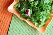 Green salad with radish, onion and cucambres